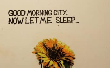 The Vices - Good Morning City Now Let Me Sleep...